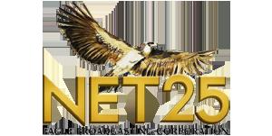 newnet25logo